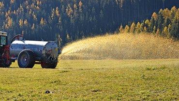 Jahr für Jahr wird viel mehr Gülle ausgebracht, als Pflanzen und Böden aufnehmen können.
