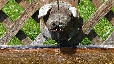 Wasser Trinkwasser Brunnen Agrarwirtschaft